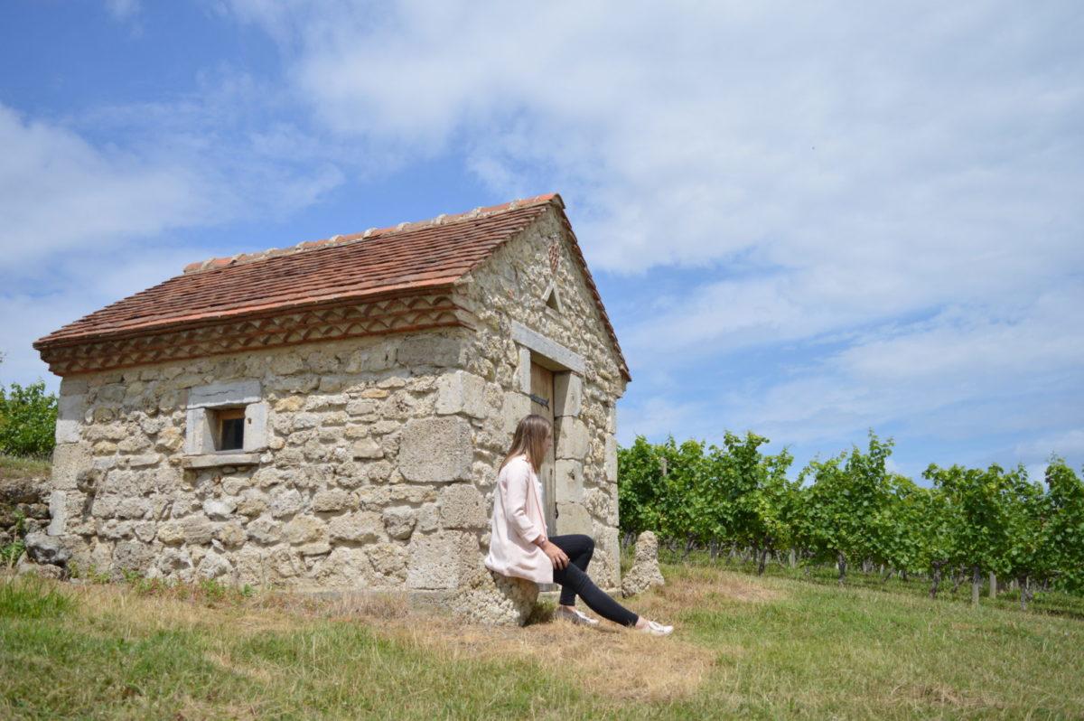 Au milieu des vignes © OT Val de Sioule