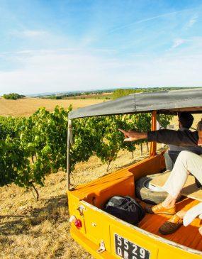 En Méhari au coeur du vignoble © F. Lacombe